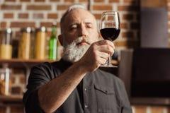 Mężczyzna mienia wina szkło Obraz Royalty Free