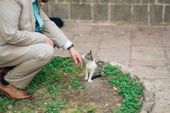 Mężczyzna muska kota na ulicie w kostiumu Obraz Stock