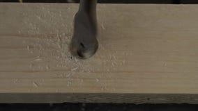 Mężczyzna musztruje drewnianą deskę zdjęcie wideo