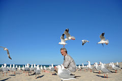 Mężczyzna na plaży zaskakującej kierdlem seagulls Obraz Stock