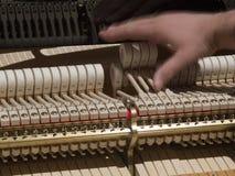 Mężczyzna nastraja pianino Obraz Stock