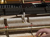 Mężczyzna nastraja pianino Zdjęcie Stock