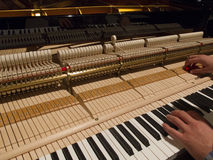 Mężczyzna nastraja pianino Fotografia Stock
