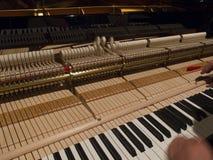 Mężczyzna nastraja pianino Obraz Royalty Free
