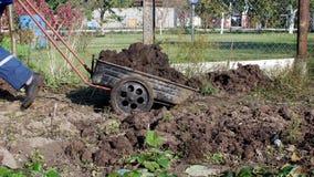 Mężczyzna niesie ogrodową furę z nawozem dla transportu wokoło ogródu, nawozi ziemię, łajno zbiory