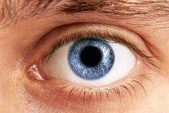 Mężczyzna oczy Obraz Stock