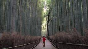 Mężczyzna odprowadzenie przez bambusowego lasu zbiory