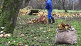 Mężczyzna ogrodniczki praca w podwórku z świntuchem w jesieni 4K zdjęcie wideo