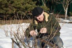 mężczyzna ogrodowy działanie Fotografia Stock