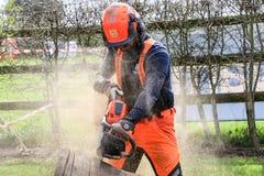 Mężczyzna piłowania drewno używać elektryczną piłę łańcuchową obrazy royalty free