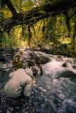 Mężczyzna podróżnika wody pitnej rzeka i las dzicy Obraz Stock