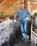 Mężczyzna pracuje na zwierzęcym gospodarstwie rolnym Zdjęcia Royalty Free