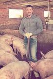 Mężczyzna pracuje na zwierzęcym gospodarstwie rolnym Obraz Royalty Free