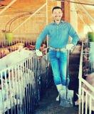 Mężczyzna pracuje na zwierzęcym gospodarstwie rolnym Fotografia Stock