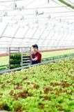 Mężczyzna pracuje w rolniczym przemysle Zdjęcia Royalty Free