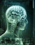 Mężczyzna promieniowanie rentgenowskie ilustracja wektor