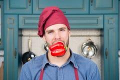 Mężczyzna przepisu pieprzu kucbarscy jarscy warzywa Jarski diety pojęcie Kulinarny przepis z pieprzem Szefa kuchni kulinarny cuki obraz stock