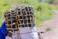 Mężczyzna przewożenia węgiel drzewny dla rodzinnego posiłku Obrazy Royalty Free