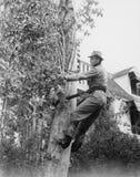 Mężczyzna przycina drzewa (Wszystkie persons przedstawiający no są długiego utrzymania i żadny nieruchomość istnieje Dostawca gwa Zdjęcia Stock