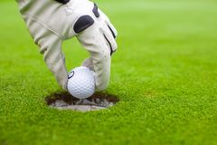 Mężczyzna ręka stawia piłkę golfową w dziurę na Fotografia Royalty Free