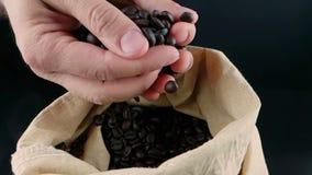 Mężczyzna ręka trzyma kawowe fasole w kanwa worku, puszek, strzału zwolnione tempo, rolnictwo i odżywianie niektóre spada, zbiory