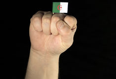 Mężczyzna ręki pięść z algierczyk flaga odizolowywającą na czerni Obrazy Royalty Free