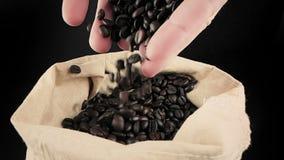 Mężczyzna ręki trzyma kawowe fasole w kanwa worku, puszek, strzału zwolnione tempo, rolnictwo i odżywianie niektóre spada, zbiory wideo