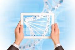 Mężczyzna ręki używać pastylka komputer osobistego Wizerunek DNA helix dalej Fotografia Stock
