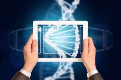 Mężczyzna ręki używać pastylka komputer osobistego Wizerunek DNA helix dalej Obrazy Stock