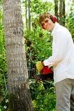 Mężczyzna rozcięcia puszek drzewo Zdjęcia Stock