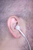 Mężczyzna ` s ucho Obraz Stock