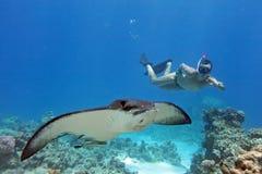 Mężczyzna snorkeling w Czerwonym morzu Egipt zdjęcie stock