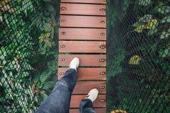 Mężczyzna spacer na drewnianym moscie na górze drzewa Obraz Stock