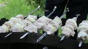 Mężczyzna stawia dalej brązowników skewers z mięsem Shish kebab w naturze, materiał filmowy grill Z kamera ruchem na zbiory
