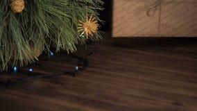 Mężczyzna stawia prezentów pudełka pod choinką Jodła stojak na drewnianym stole i dekorujący z rozjarzoną girlandą i zbiory