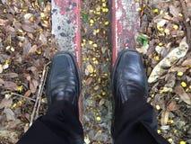 Mężczyzna stojak na terenie w parku Fotografia Stock