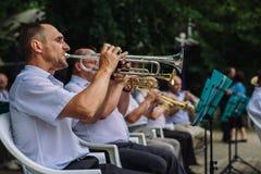 Mężczyzna sztuki instrumenty muzyczni Zdjęcia Royalty Free