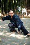 Mężczyzna sztuki taiji boks Obrazy Royalty Free