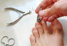Mężczyzna tnący toenails z cążki Samiec rżnięci toenails na stopie Stopy i palec u nogi zakończenie Odgórny widok Obrazy Royalty Free