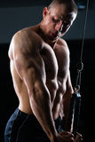 Mężczyzna trenuje w gym przy ciężarami Obraz Royalty Free