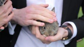 Mężczyzna trzyma królika w rękach zbiory wideo