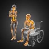 mężczyzna wózek inwalidzki Fotografia Royalty Free