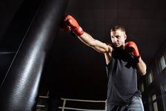 Mężczyzna w bokserskich rękawiczkach Bokserski mężczyzna przygotowywający walczyć Boksować, trening, mięsień, siła, władza - poję obraz royalty free