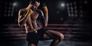 Mężczyzna w bokserskim stojaku Obraz Royalty Free