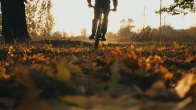 M??czyzna w kapiszonu je?dzieckim bicyklu przez jesie? lasu przy zmierzchu t?em Sporty faceta je?dzi? na rowerze plenerowy jasne  zbiory