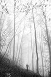 Mężczyzna w mgle Fotografia Royalty Free