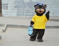 Mężczyzna w niedźwiadkowym kostiumu w mieście w dniu ochrona zwierzęta, wakacyjna rozrywka, reklamuje zdjęcia royalty free