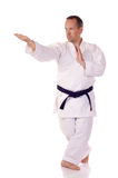 Karateka zdjęcie royalty free