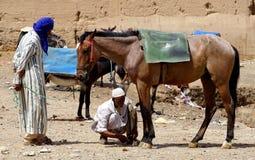Mężczyzna wiążą jego konia parkować w souk miasto Rissani w Maroko Zdjęcia Stock