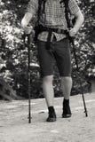 Mężczyzna Wycieczkuje w lesie Zdjęcie Royalty Free
